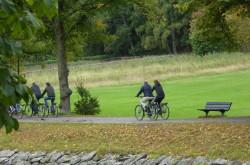Cykelkonferens 2019